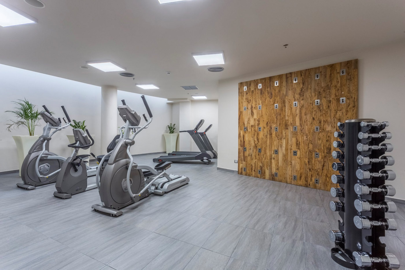 Elysian luxury hotel and spa Kalamata fitness equipment